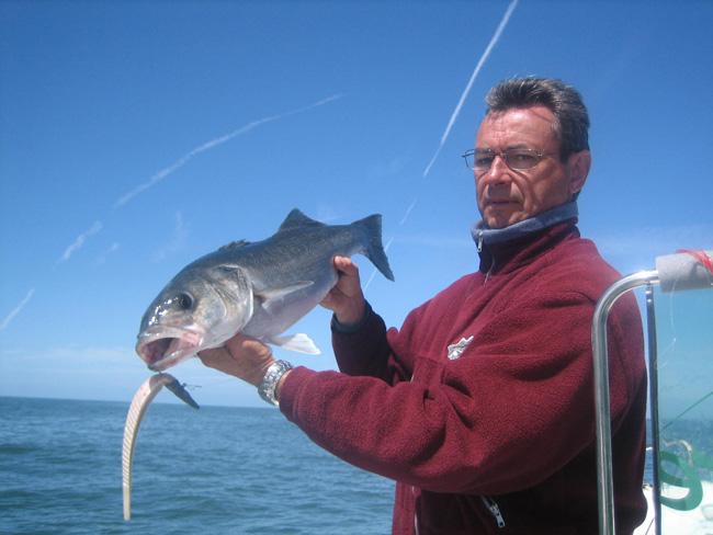Pêche au bar Noirmout1